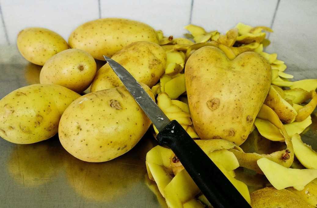 Politik und Kartoffeln haben mehr Gemeinsamkeiten als man vielleicht glauben mag.