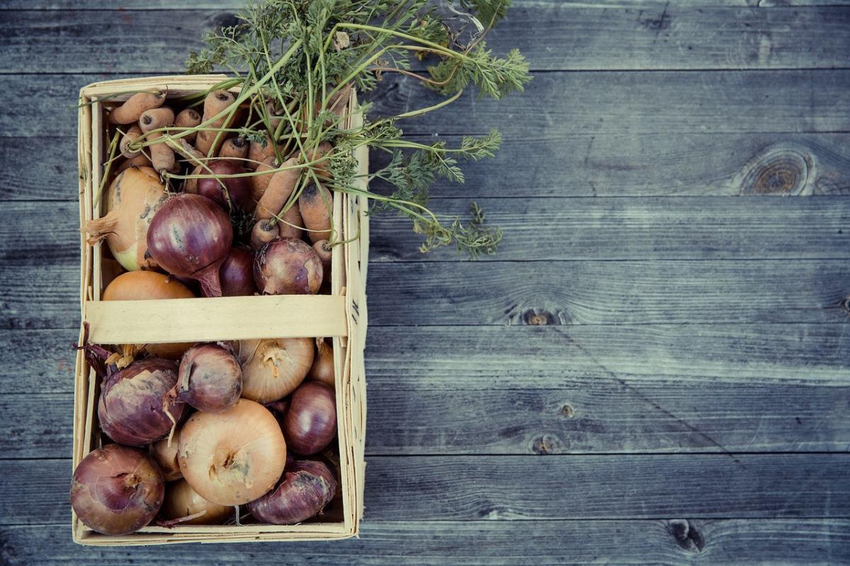 Nachhaltigkeit Feldfrüchte Gemüse Markus Spiske; Pixabay; Creative Commons CC0