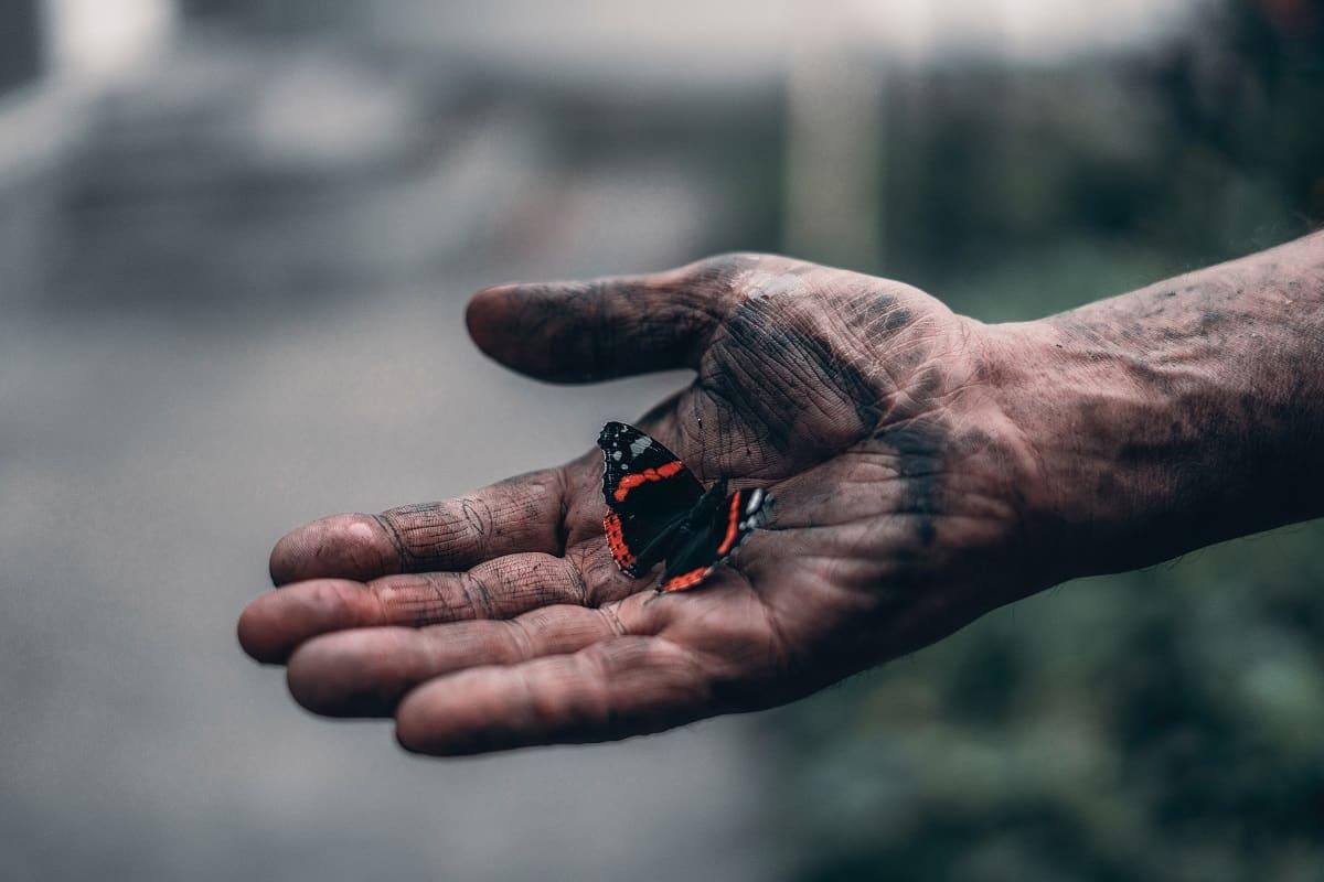 Schmetterling in der Hand eines Arbeiters. (Foto: Elijah ODonnell, Unsplash.com)